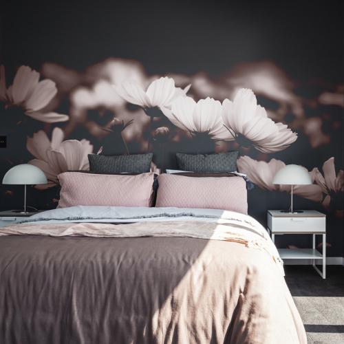 Papier peint panoramique Fleurs de Cosmos