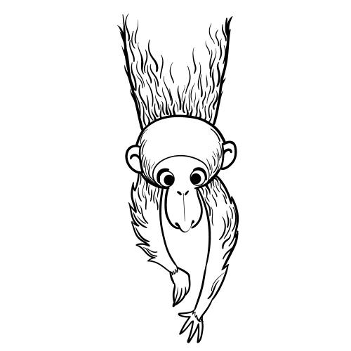Lemurian and monkey wall stickers