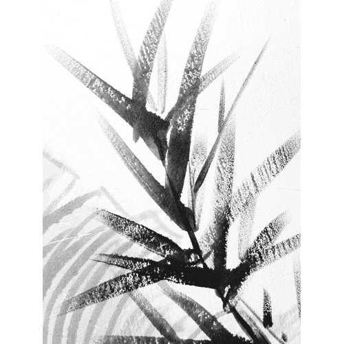Film pour vitres Abstract foliage